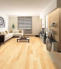 paint colors for living room with light wood floors gopelling net
