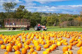 Pumpkin Patches Cincinnati Ohio Area by 9 Ideas For Fall Fun In Cincinnati U2013 Cincinnati Parent Magazine