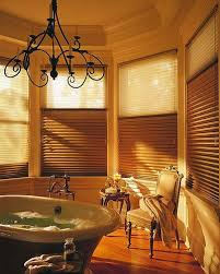 Design Bathroom Window Treatments by 7 Best Window Coverings Images On Pinterest Arches Eyes And Honey