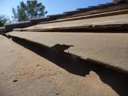 Tile Underlayment Membrane Home Depot by Horizon Energy