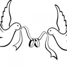 Love Birds Drawings Two Bird