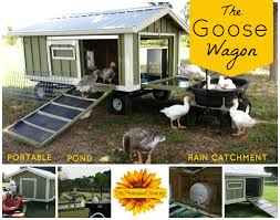Large Portable Goose (or Duck) Coop Wagon With Water Catchment ... Building A Chicken Coop Kit W Additional Modifications Youtube Best 25 Portable Chicken Coop Ideas On Pinterest Coops Floor Space For And Runs Raising Plans 8 Mobile Coops Amazing Design Ideas Hgtv Pawhut Deluxe Backyard With Fenced Run Designs For Chickens Barns Cstruction Kt Custom Llc Millersburg Oh Buying Guide Hen Cages Wooden Houses Give Your Chickens Field Trip This Light Portable Pvc Diy That Are Easy To Build Diy