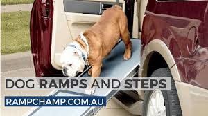 Dog Ramps And Steps From Ramp Champ - YouTube Solvit Deluxe Xl Telescoping Pet Ramp Champ Telescopic Dog From Easy Animal 5 Foot Folding For Cardoor Lweight Anti Slip Mr Hzhers Smart 70 Reviews Wayfair Extrawide Ramps Discount Gear Travel Lite Bi Fold Full Black Blue 176263 Collapsible Loader Steps Vehicles New Suv Build A Foldable Best Suvs Cars And Trucks Pro Ultralite Bifold Chewycom