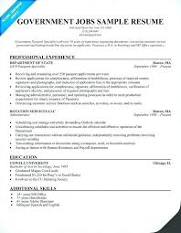 Sample Resume For Job Government Examples Elegant Federal