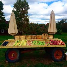 Lane Farms Pumpkin Patch by 7 New Jersey Apple Orchards U0026 Pumpkin Patches Near Hoboken And