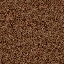 Grainy Texture Orange