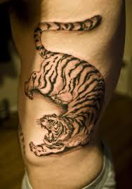 Korean Tiger Tattoo Meaning