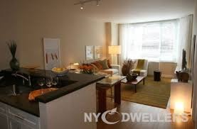 1 Bedroom Apartments Nyc Classy New York Apartment 1 Bedroom