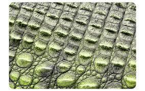sticker wildes tier krokodil leder laptop skin