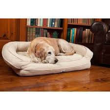 Wayfair Dog Beds by 3 Dog Pet Supply Dog Beds You U0027ll Love Wayfair