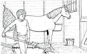 Realistic Arabian Horse Coloring Pages Sheets Color For Adults Best