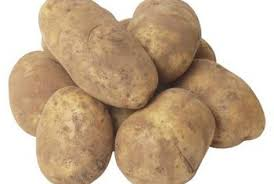 Potato Bag Gardening Produces New Or Storage Potatoes