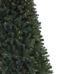 Fraser Fir Christmas Trees by Brooklyn Led Spruce Christmas Tree Treetopia