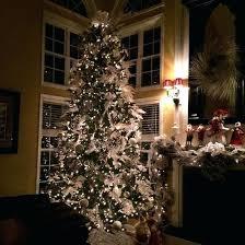 Best Trees Images On 75 Ft Pre Lit Led Royal Douglas Fir Christmas Tree Lights