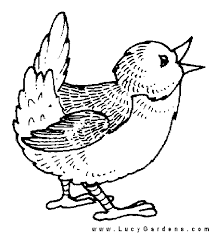 Bird Pictures To Color