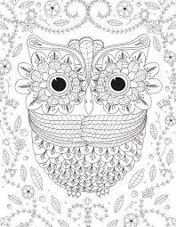 Big Eyed Owl Adult Photo Image Extra Large Coloring Books