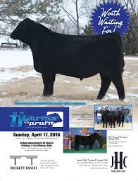 Chianina Association - Justin Holt Cattle Sale Catalog Online Davidson Jackpot 74z Salebook Bull Barn Saler Semen Competive Edge Genetics Abs Global Inc Bovine Reproduction Services And December 2011 Horizons By Genex Cooperative Issuu Lookout Mountain Llc Home Facebook Znt Cattle Co 2012 44 Arsenal 4w07 Kittle Farms Hart Star 35y43 For Sale 2014