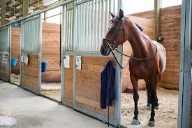 Horse Boarding Costs And Expenses Best 25 Horse Barns Ideas On Pinterest Dream Barn Farm Shedrow Barns Shed Row Horizon Structures Lshaped Indoor Riding Arenas Arena Home Design Post Frame Building Kits For Great Garages And Sheds Barn Style House Build Your Own Homes Small Monitor Wood Horse Stables Archives Blackburn Architects Pc Shelter For Miniature Donkeys Or Goats Pros Timber Framed Denali 60 Gable Youtube