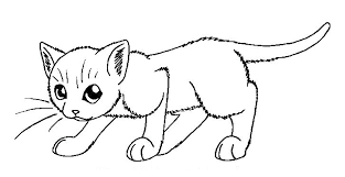 Kitten Coloring Page Kittens Pages Printable Cute Pictures Kitties
