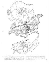 16 Best PAGAN ADULT COLOURING Images On Pinterest