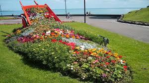 Spilled Flower Pot Garden Ideas