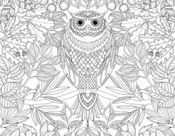 Unleash Your Inner Child With Johanna Basfords Coloring Books For Adults
