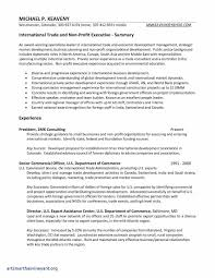 Resume Sample For Economics Teacher Simple American Save Propsal Template Unique