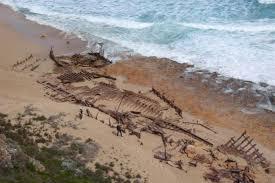 steve s shipwreck site november 2012