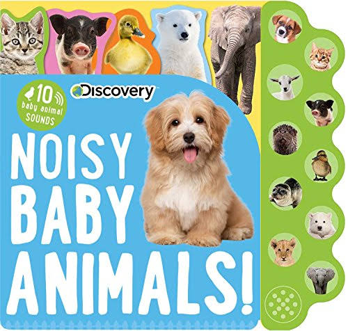 Discovery: Noisy Baby Animals - Editors of Silver Dolphin Books
