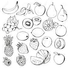 Fruit black and white kiwi fruit clipart black and white clipartfox