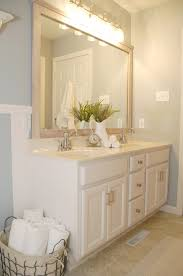 Color For Bathroom Cabinets by Bathroom Cabinet Transformation Living Rich On Lessliving Rich