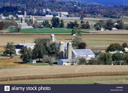Pumpkin Patch Picking Lancaster Pa by Amish Farms Stock Photos U0026 Amish Farms Stock Images Alamy