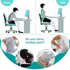 Orthopedic Lumbar Support Pillow Back Cushion With Memory ... 8 Best Ergonomic Office Chairs The Ipdent Top 16 Best Ergonomic Office Chairs 2019 Editors Pick 10 For Neck Pain Think Home 7 For Lower Back Chair Leather Fniture Fully Adjustable Reduce Pains At Work Use Equinox Causing Upper Orthopedic Contemporary Pc 14 Of Gear Patrol Sciatica Relief Sleekform Kneeling Posture Correction Kneel Stool Spine Support Computer Desk