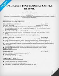 Insurance Professional Resume Sample For Agent Examples