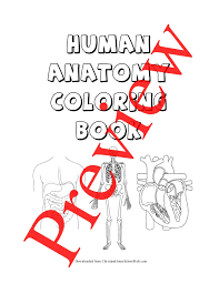 Musculoskeletal Anatomy Coloring Book And Physiology Pages Spine Cooloring
