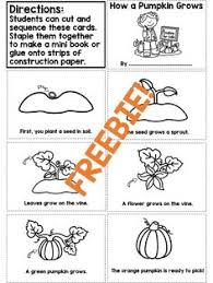 Printable Pumpkin Books For Preschoolers by Life Cycle Of A Pumpkin Mini Booklet Free Printable Decodable