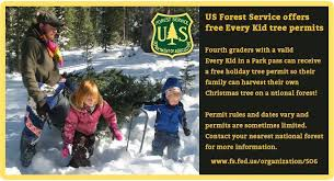 Christmas Tree Permits Colorado Buffalo Creek by Us Forest Service Shoshone National Forest Home Facebook