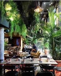 100 Kube Hotel Plants At The Paris Jungalow Style In 2019