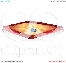 1080x1024 Sand Box Clipart1911176