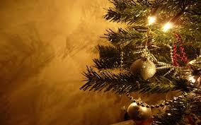 Bethlehem Lights Christmas Trees Recall by Hebrew Roots Of Christian Holidays U2013 Christmas Trees U2013 Little Guy
