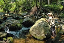 Laurel Bed Lake by Fishing Laurel Bed Lake Sw Virginia