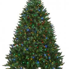 Frontgate Christmas Trees Uk by 100 Frontgate Christmas Trees Uk Marvelous Ideas Champagne