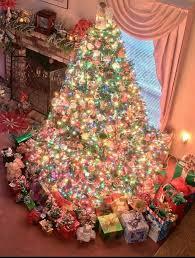Plantable Christmas Trees Columbus Ohio by 36 Best Christmas Trees Images On Pinterest Merry Christmas