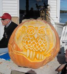 Owl Pumpkin Carving Pattern by Decorating Ideas Interesting Accessories For Kid Halloween