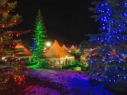 Twinkling Christmas Tree Lights Canada by 963 Best ᏟᎻᎡḭᏚᎢᎷᎪᏕ Lights Nights Of Light Images On