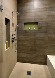 what is the brown horizontal tile in the shower houzz bathroom