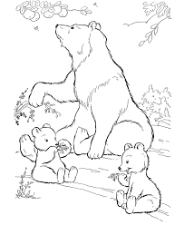 Wild Animal Coloring Page Free Printable Bears Eating Berries Pages Featuring Wildlife And Sheets
