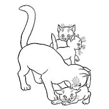 Cat Playing With Three Kittens Coloring Sheet