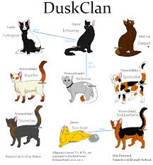 warrior cat names clan names for warrior cats warrior cat clan names warrior