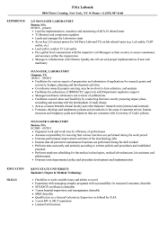 Download Manager Laboratory Resume Sample As Image File
